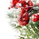 Dampfbad Weihnachten